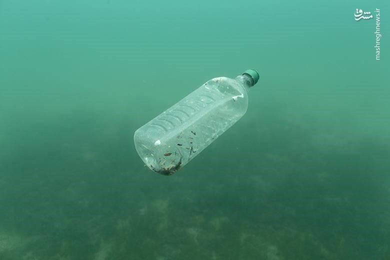 آلودگی ضایعات پلاستیک نایلون