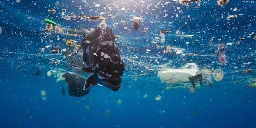 آلودگی پلاستیک اقیانوس ها