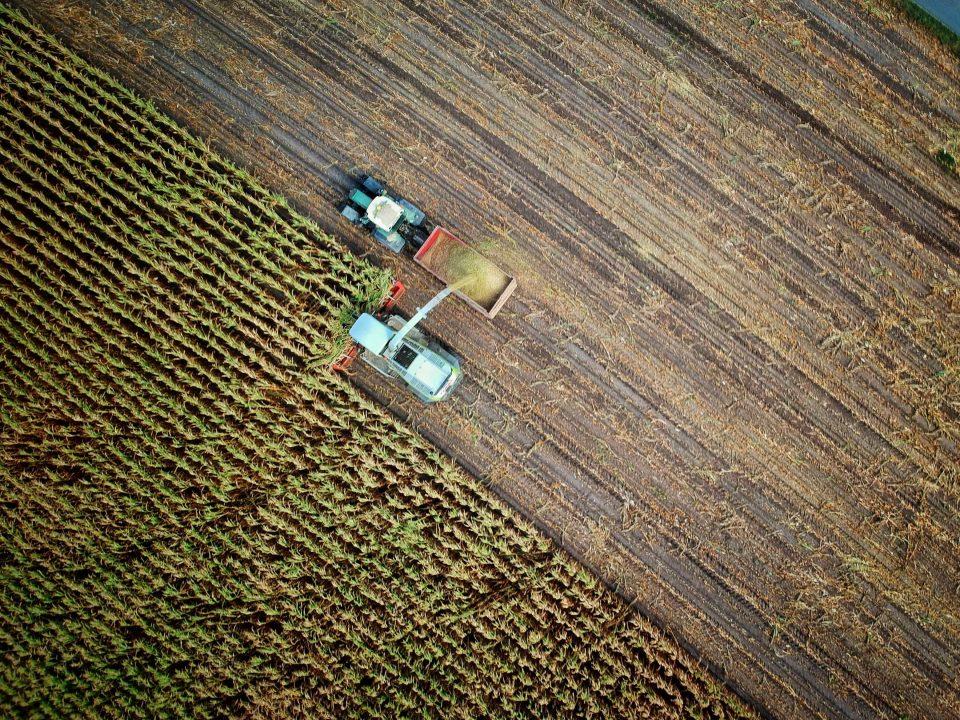 رییس نمایندگی حفاظت محیط زیست بیلهسوار مغان از الزام تمامی زارعان و کشاورزان این شهرستان به جمعآوری نایلونها و ضایعات پلاستیکی از مزارع کشت جالیزی و تحویل آن به واحدهای بازیافت خبر داد