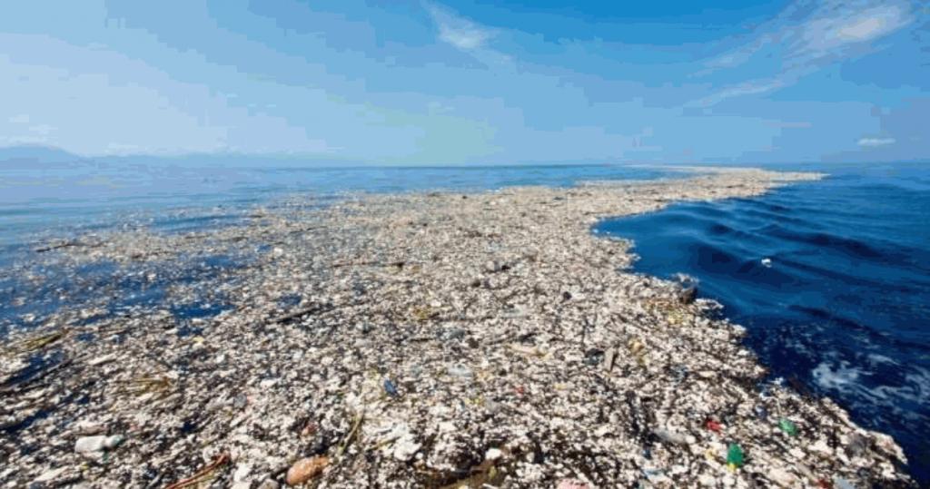 هر ساله حدود ۵ تا ۱۲ میلیون تُن ضایعات پلاستیک و میکروپلاستیک بر اثر فعالیتهای انسانی وارد محیطهای دریایی میشود که یکی از عوامل آلودگی اقیانوسها هستند.