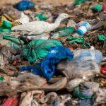 خریدار ضایعات پلاستیک در مشهد